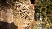 Brennholz zvk