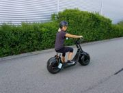 Electric Harley Citycoco Roller Scooter