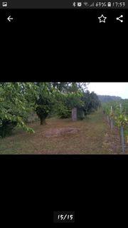 Garten Grundstück