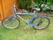 Fahrrad Wheeler 4500