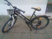 Fahrrad Tecnobike Urban