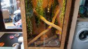 Terrarium mit schlangen