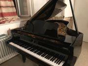 Flügel Klavier