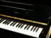 Klavierspieler & Akkordeonspieler . . . !