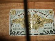 Hornsteiner Doppelhalsgitarre uralt