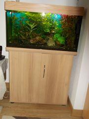 Verkaufe Aquarium