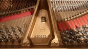 Steinway & Sons Flügel