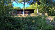 Garten und Obstbaumwiese