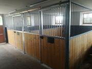 2 freie Pferdeeinstellplätze