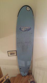 Surfboard Wellenreiter