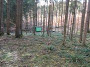 Suche Waldgrundstück