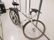 FILA Trekking-/Crossbike