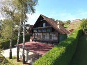 Südost-Steiermark Kellerstöckl mit kleinem Weingarten