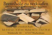 Brennholz aus dem Wachenheimer Wald