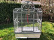 Vogelkäfig Vogelvoliere Antik