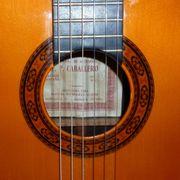 Klassischer Gitarrenunterricht - komme ins Haus