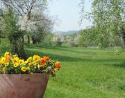2019 Ferien im Odenwald in