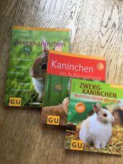Kaninchenhaltung - Fachbücher