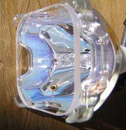 Beamer Ersatzlampe DT00401