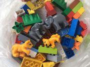 Lego Duplo Tierbabys
