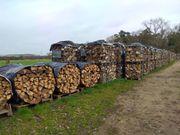 Brennholz, Kaminholz, Buche