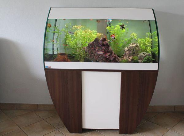 designer aquarium eheim scubabay 270 l mit unterschrank in. Black Bedroom Furniture Sets. Home Design Ideas