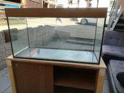 Aquarium 100x40x50 200