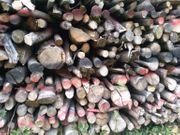 Brennholz jetzt Günstig Kaufen