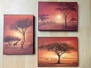 3 wunderschöne Afrika-