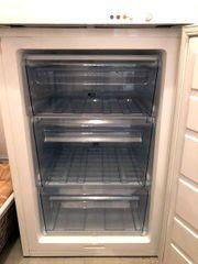 AEG-Tiefkühlschrank / Gefrierschrank