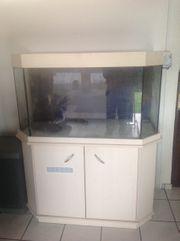 Aquarium Mit Möbel