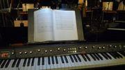 Pianist, Klavierspieler, Keyboarder (