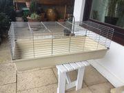 Kaninchen-Stall für