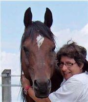 Horsemanship- Bodenarbeit mit