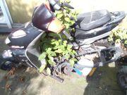 Roller Entsorgung Motorrad-