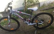 Fahrrad Scotty