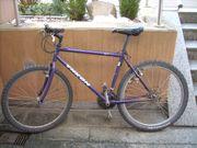 Mountainbike für die