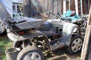Traingswagen Quad für Schlitten-Hunde Hunde-Training-Wagen