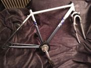 Fahrrad Rahmen Frame Set aus