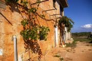Landfinca vor Porto Cristo Mallorca