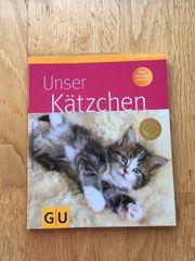 Ratgeber junge Kätzchen