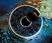 Pink Floyd Pulse Vinyl 4