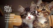 Katzenbetreuer - Versichert, bewährt