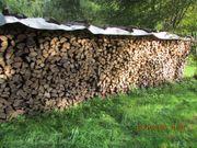 Brennholz, Buche, trocken,