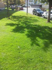 Garten Arbeit und