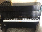 Klavier Hoffmann Bechstein