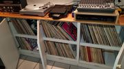LP-Sammlung (527)