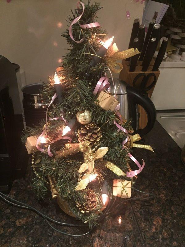 Weihnachtsbaum Kaufen Pforzheim.Weihnachtsbaum Tannenbaum Christbaum In Pliezhausen Dekoartikel