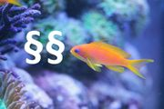 Vortrag: Meerwasser-Aquaristik: