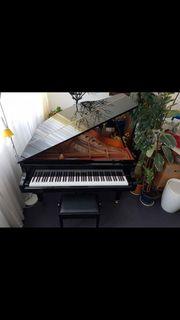 Piano Forte Flügel